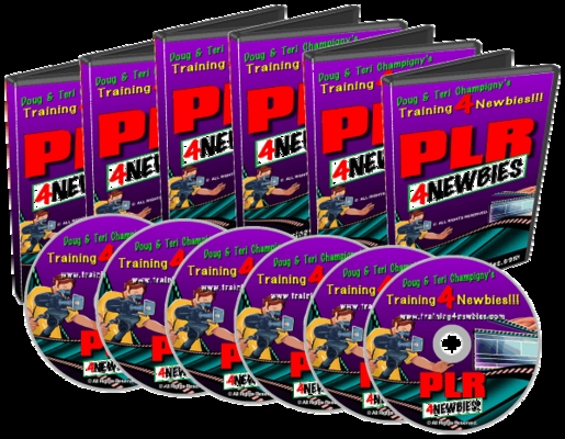 Product picture PLR4Newbies-Step By Step Videos